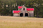 Wood barn with dormer, two doors, red metal roof, edge of the woods in rural eastern Texas.