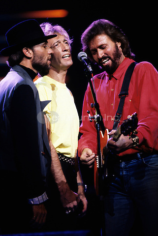 The Bee Gees photographed by Larry Busacca in June of 1989. ©RTBusacca / MediaPunch