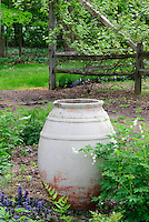 Ornamental urn container art in shade garden area with Dicentra spectabilis 'Alba' = Lamprocapnos (formerly Dicentra) spectabilis Alba white bleeding heart in spring at Burpee