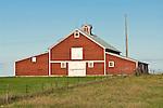 Red barn, white trim and doors, cupola ventilator, North Dakota.