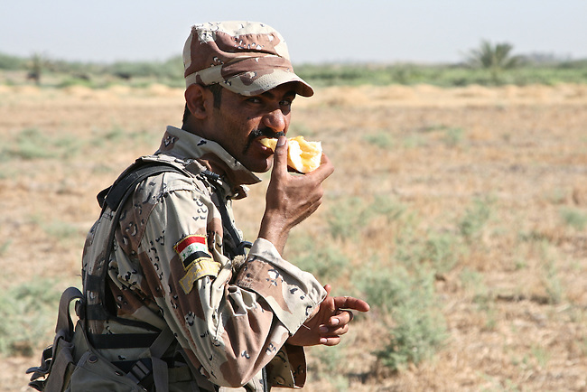 An Iraqi soldier eats a melon that he's picked from a field during an operation with U.S. troops looking for insurgents and weapons caches south of Mahmudiyah, Iraq. July 11, 2007. DREW BROWN/STARS AND STRIPES