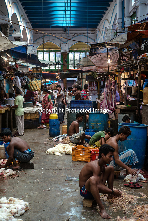 Workers skin chickens on the floor of the century-old Sir Stuart Hogg Market, also known as the New Market in Kolkata, West Bengal  on Friday, May 26, 2017. Photographer: Sanjit Das