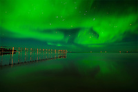 Northern lights (aurora borealis) reflected in Lake Winnipeg<br /> Matlock<br /> Manitoba<br /> Canada