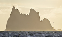 'The Castle', Chatham Islands, Pacific Ocean off the coast of New Zealand