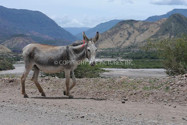 WWW.ACEPIXS.COM . . . . . .January 13, 2013...Peru....Road from Ayacucho to Huancayo, Peru 3s, on January 13, 2013 in Peru ....Please byline: KRISTIN CALLAHAN - ACEPIXS.COM.. . . . . . ..Ace Pictures, Inc: ..tel: (212) 243 8787 or 212 489 0521..e-mail: kristincallahan@aol.com...web: http://www.acepixs.com .