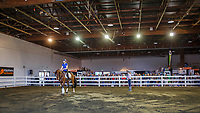 Jody Hartstone: Teaching Turn, the biggest mistake in ridden sport horse training. 2019 Equitana Auckland. ASB Showgrounds. Auckland. New Zealand. Thursday 21 November. Copyright Photo: Libby Law Photography