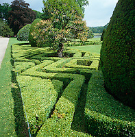 The low box hedges have been pruned into geometric shapes which weave amongst the line of trees