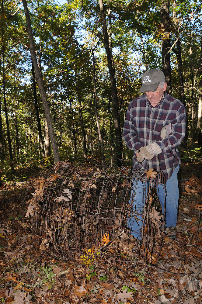 NWA Democrat-Gazette/FLIP PUTTHOFF <br /> Ken French of the Lake Wedington area removes old fencing Oct. 21 2016 during a Northwest Arkansas Master Naturalists work day at Sweden Creek Falls Natural Area.