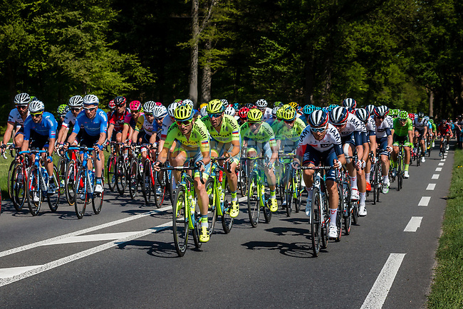 Peloton with Tinkoff (RUS) and IAM Cycling (SUI) leading at Warnsveld with 80 km to go, stage 3 from Nijmegen to Arnhem running 190 km of the 99th Giro d'Italia (UCI WorldTour), The Netherlands, 8 May 2016. Photo by Pim Nijland / PelotonPhotos.com | All photos usage must carry mandatory copyright credit (Peloton Photos | Pim Nijland)
