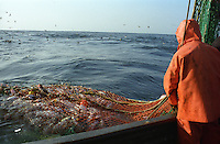 The F/V Windjammer, a dragger, also known as a trawler, fishes for gray cod in the Bering Sea.