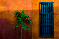 A small palm tree is seen placed in front of a Spanish colonial house in the walled city of Cartagena, Colombia, 11 December 2017. With the peace agreement, ending a 52-year civil conflict and promising political stability, together with rapid economic growth and unexploited tourism potential, Colombia has truly become a holiday destination. Cartagena, a UNESCO World Heritage site on the tropical Caribbean coast, plays the primary role in Colombia's tourism renaissance. The historic sites from the Spanish colonial times are being restored, private investments are visible throughout the city and an increased number of local people benefit from the boom of the travel related services.