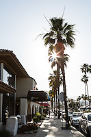 El Paseo shopping district, Palm Desert, California.     Images are available for editorial licensing, either directly or through Gallery Stock. Some images are available for commercial licensing. Please contact lisa@lisacorsonphotography.com for more information.