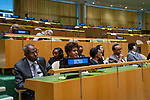 General Assembly Seventy-fourth session<br /> <br /> eletaria