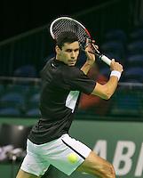 09-02-14, Netherlands,Rotterdam,Ahoy, ABNAMROWTT, Victor Hanescu<br /> Photo:Tennisimages/Henk Koster