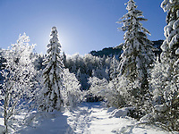 Germany, Bavaria, Upper Bavaria, Winter in Werdenfelser Land: winter scenery at Upper Isar Valley