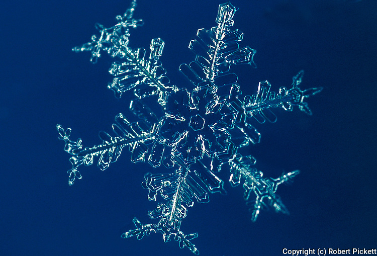 Snow flake - close up, showing beautiful structure, blue background, macro, photographic technique, microscopic.United Kingdom....