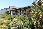 Cactus and roses at Mission San Francisco Solano