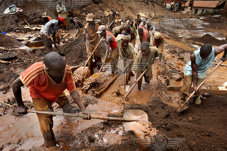 Men and boys dig through water soaked soil in a gold mine... /Felix Features