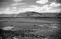 landscape, nature, flat land, Tibet