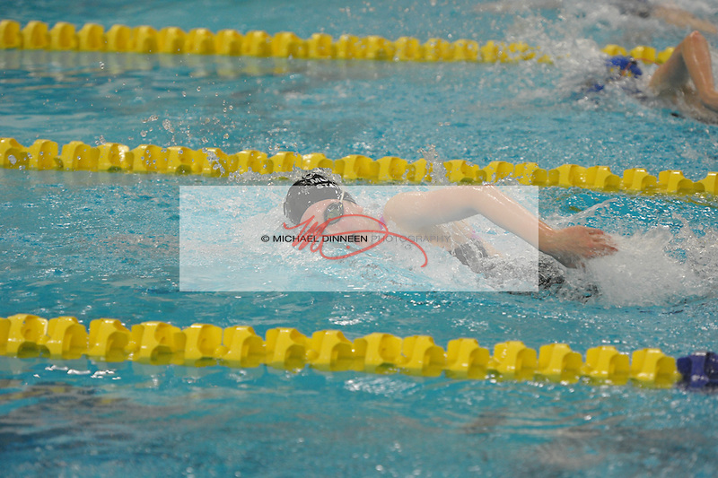 Chugiak's Cheyenne Burke swims in a preliminary heat of 100-yard freestyle at the state finals Friday, Nov. 6, 2015.  Photo for the Star by Michael Dinneen