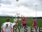 Castleisland Rugby
