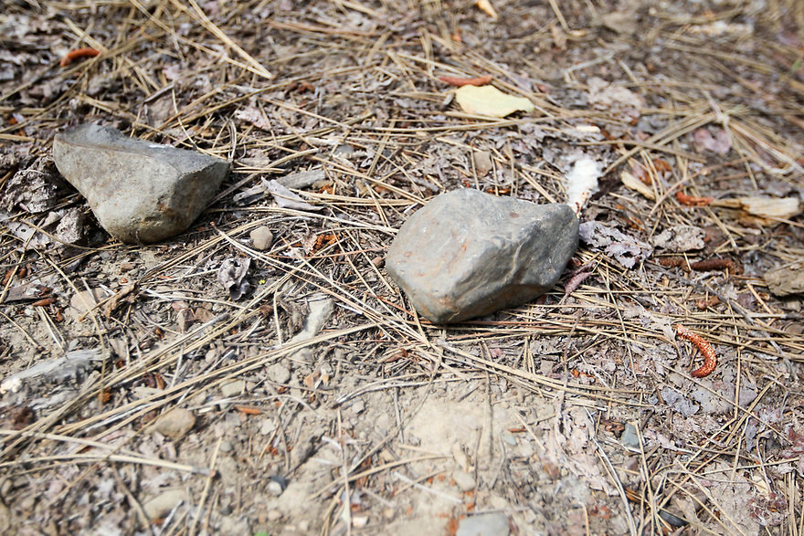 Found these two rocks under the tent were I was sleeping this past weekend.  Its no wondeer my BACK is killing me.  Photo credit Jesse Beals / www.Olympicphotogroup.com