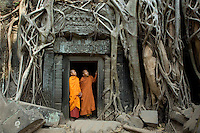 Monks at Ta Prohm Temple. Angkor, Cambodia.