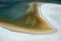 Salt marsh coast