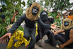 Pride mascots take part in the Dayurejo conservation carnival. Java leaf monkey (a.k.a. ebony langur) dances in front.