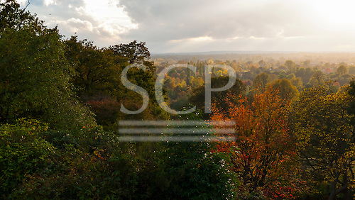 Richmond Park, England. Bright view over Surrey, autumn; changing seasons.