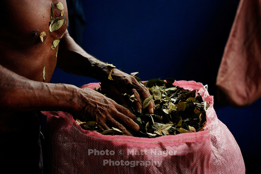 Coca leaf production in Eterezama, Bolivia. Photos taken from April march 23-April 3, 2006. (Photo/ MATT NAGER)
