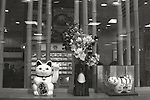 Japanese restaurant inside Tokyo Station. The tiger represents this year's animal in the Chinese calendar while the white cat is a symbol of fortune that it is believed to attract more customers to a restaurant.