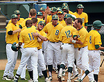 SIOUX FALLS, SD - MAY 24:  John Skrbec #11 from NDSU is mobbed by teammates after belting a grand slam in the first inning of the 2014 Summit League Baseball Championship game Saturday afternoon at the Sioux Falls Stadium. (Photo by Dave Eggen/Inertia)