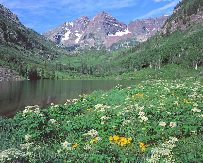 A view of the Maroon Bells and a glorious meadow of wildflowers in the summer, near Aspen, Colorado.