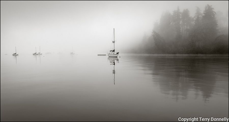 Vashon Maury Island, Washington:<br /> Winter fog and sunrise reflections on Quartermaster Harbor, Dockton