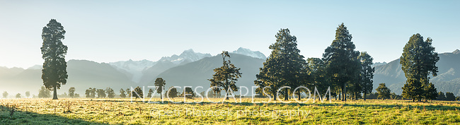 Sun rises over farmalnd at Fox Glacier with Southern Alps in background, Westland Tai Poutini National Park, West Coast, South Westland, UNESCO World Heritage Area, New Zealand, NZ