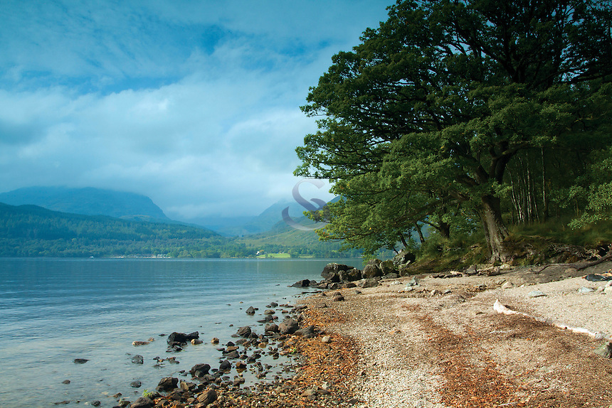 Loch Lomond from near Inversnaid, Loch Lomond and the Trossachs National Park, Stirlingshire