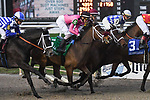 January 19, 2019:  #5 Needs Supervision ridden by Joseph Rocco, Jr wins the Silver Bulletday Race at the Fair Grounds Race Course on January 19, 2019 in New Orleans, Louisiana. Parker Waters/Eclipse Sportswire/CSM Various images from horse races held at the Fairgrounds Race Course in New Orleans, LA on January 19, 2019.