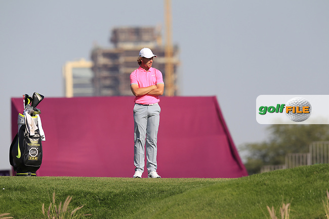 Tommy FLEETWOOD (ENG) on the 10th green during Thursday's Round 2 of the 2015 Commercial Bank Qatar Masters held at Doha Golf Club, Doha, Qatar.: Picture Eoin Clarke, www.golffile.ie: 1/22/2015