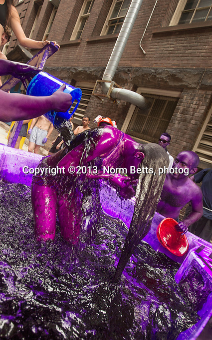 The University of Toronto<br /> Toronto, Ontario, Canada<br /> Every fall freshman engineers at most Canadian universities, are dyed purple by the more senior class, as part of student orientation  ---  all in fun, the dye wears off after about a week<br /> Sept 02, 2013<br /> Norm Betts, photographer<br /> 416 460 8743<br /> normbetts@canadianphotographer.com<br /> &copy;2013, normbetts, photographer