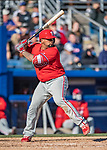 6 March 2019: Philadelphia Phillies catcher Deivy Grullon at bat during a Spring Training game against the Toronto Blue Jays at Dunedin Stadium in Dunedin, Florida. The Blue Jays defeated the Phillies 9-7 in Grapefruit League play. Mandatory Credit: Ed Wolfstein Photo *** RAW (NEF) Image File Available ***