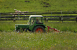 Harvesting spring grass for cattle fodder, Imst district, Tyrol/Tirol, Austria, Alps.