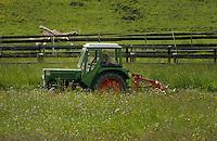 Harvesting spring grass for cattle fodder, Imst district, Tyrol/Tirol, Austria, Alps.