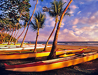 Canoes lined up for upcoming boat race. Launiupoko State Wayside Park. Maui, Hawaii.