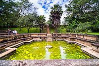 Ancient City of Polonnaruwa, Bathing Pool (Kumara Pokuna) of Parakramabahu's Royal Palace, UNESCO World Heritage Site, Cultural Triangle, Sri Lanka, Asia. This is a photo of the Bathing Pool (Kumara Pokuna) of Parakramabahu's Royal Palace at the Ancient City of Polonnaruwa, a UNESCO World Heritage Site in the Cultural Triangle area of Sri Lanka, Asia.