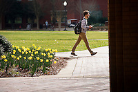 Daffodils near McCool Hall with students walking past.<br />  (photo by Megan Bean / &copy; Mississippi State University)