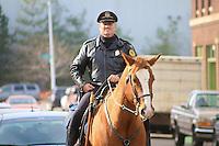 Detroit's Cavalry