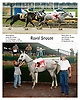 Royal Snooze winning at Delaware Park on 6/27/06