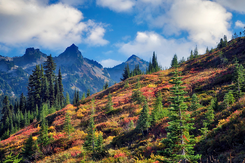 Tatoosh Mountains with fall color as seen from Mt. Rainier National Park. Washington