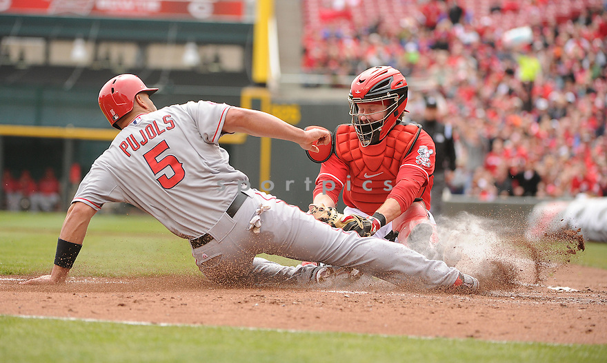 Cincinnati Reds Ryan Hanigan (29) in action during a game against the Los Angeles Angels on April 4, 2013 at Great American Ballpark in Cincinnati, OH. The Reds beat the Angels 5-4.